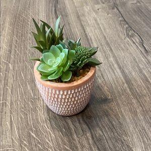 🌵 New Faux Succulent In Terra Cotta Pot
